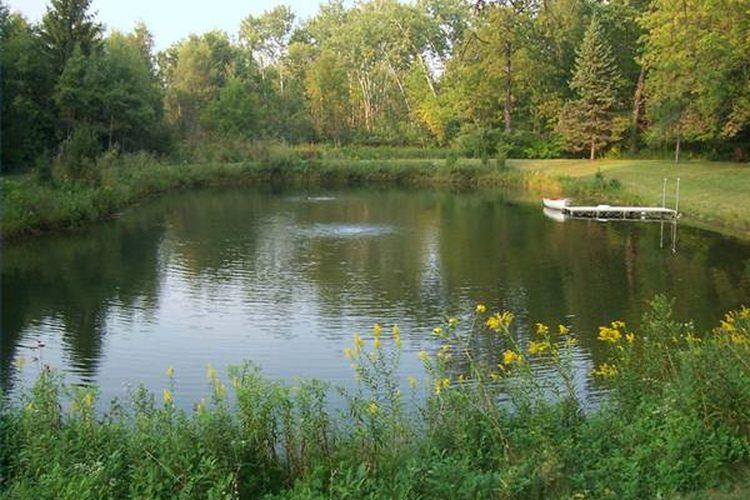 Pesca en estanques consejos y trucos la pesca deportiva for Como mantener un estanque limpio