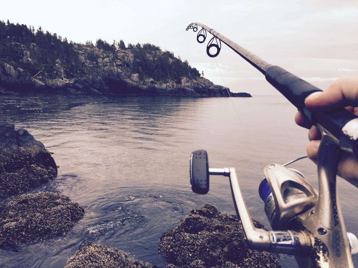 Cañas de Pescar - Tipos 296396cfbde